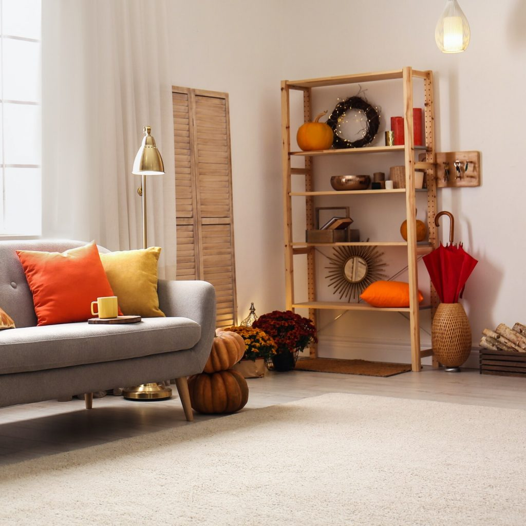 Color to Your Home | Carpets by Otto